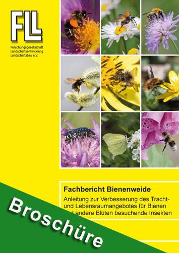 Fachbericht Bienenweide, 2020